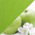 Зеленые яблоки/зеленый