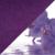 Орхидея/сирень