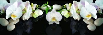 Стеновая панель Белая орхидея